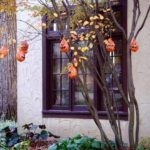 Baloane decorative Halloween