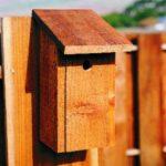 Casuta pasari din lemn