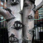 Copac cu ochi