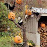 Decoratiune gradina Halloween