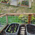 Gradina de legume in vase de tabla