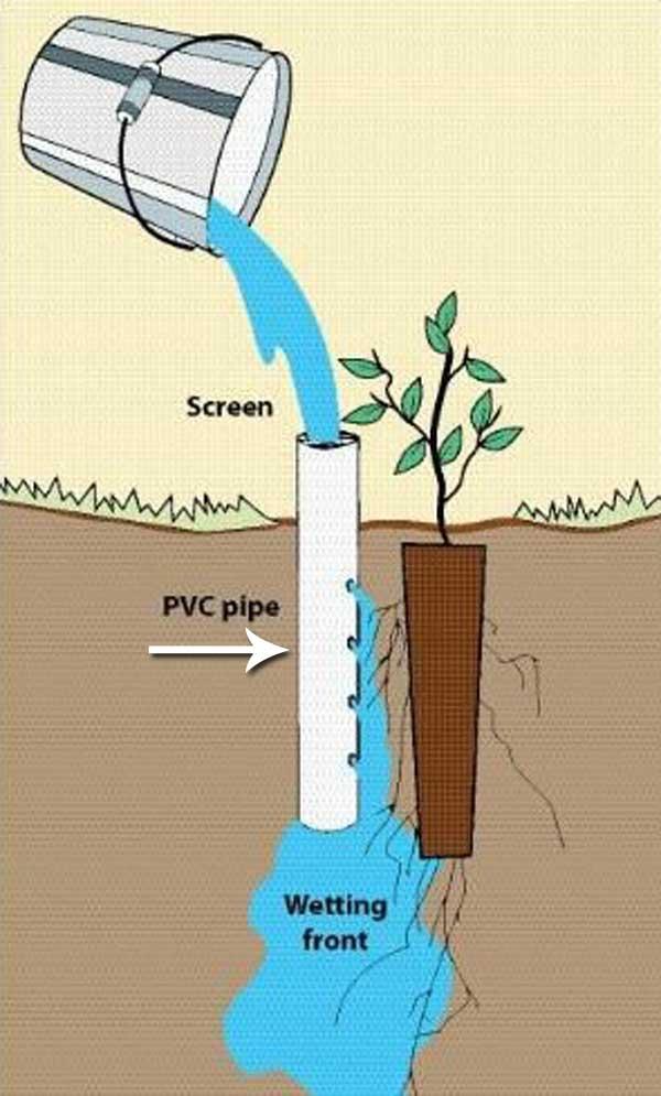 Sistem irigare la radacina din teava PVC