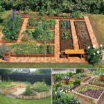 Straturi din lemn cu legume