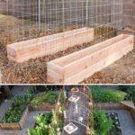 Straturi inaltate pentru legume agatatoare