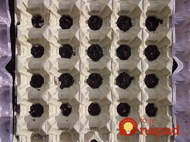 Cartoane de oua folosite in gradina