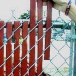 Decor gard de sarma cu lemn