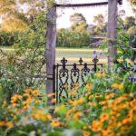 Decoratiune rustica gradina
