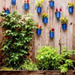 Gard decorat cu vase de flori