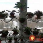 Suport de flori pentru fereastra