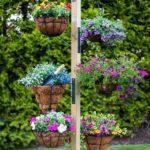 Suport vase flori agatate