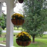 Suporturi flori agatatoare
