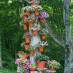Trunchi de copac cu multe flori
