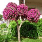 Trunchi de copac decorat cu flori
