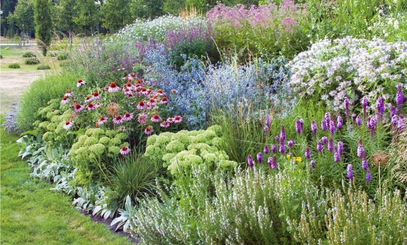 Decor gradina cu plante si flori decorative