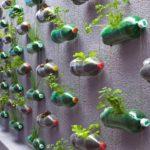 Decor perete din sticle de plastic si flori