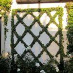 Decoratiune zid curte