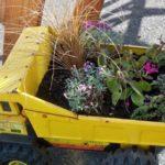 Flori plantate in masina de jucarie