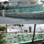 Garduri din acvarii cu pesti