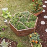 Ghiveci plante aromatice gradina