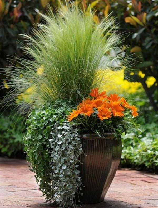 Aranjament cu plante si flori