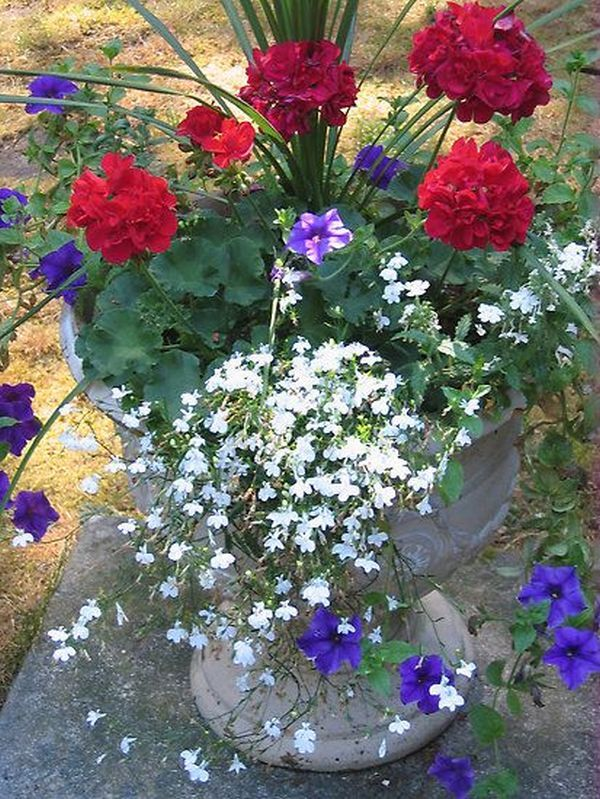 Aranjament floral gradina