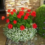 Aranjament floral intrare casa