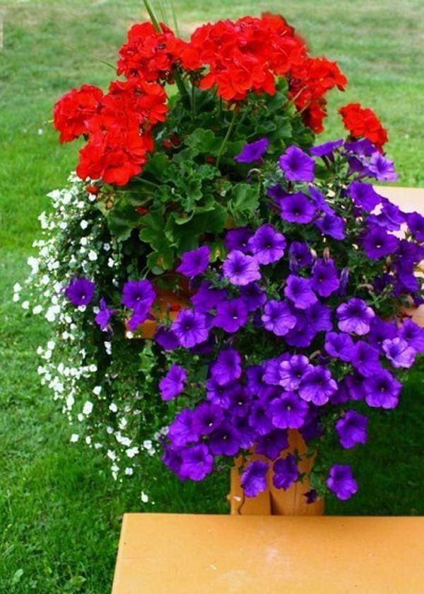 Aranjament floral terasa