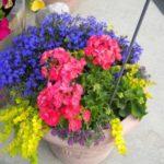 Aranjament floral vesel