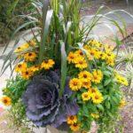 Aranjament flori ghiveci