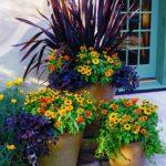 Ghivece cu flori colorate pe terasa