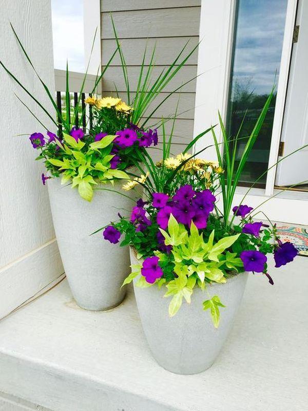 Ghivece cu flori colorate