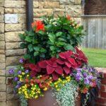 Ghiveci cu plante decorative si flori