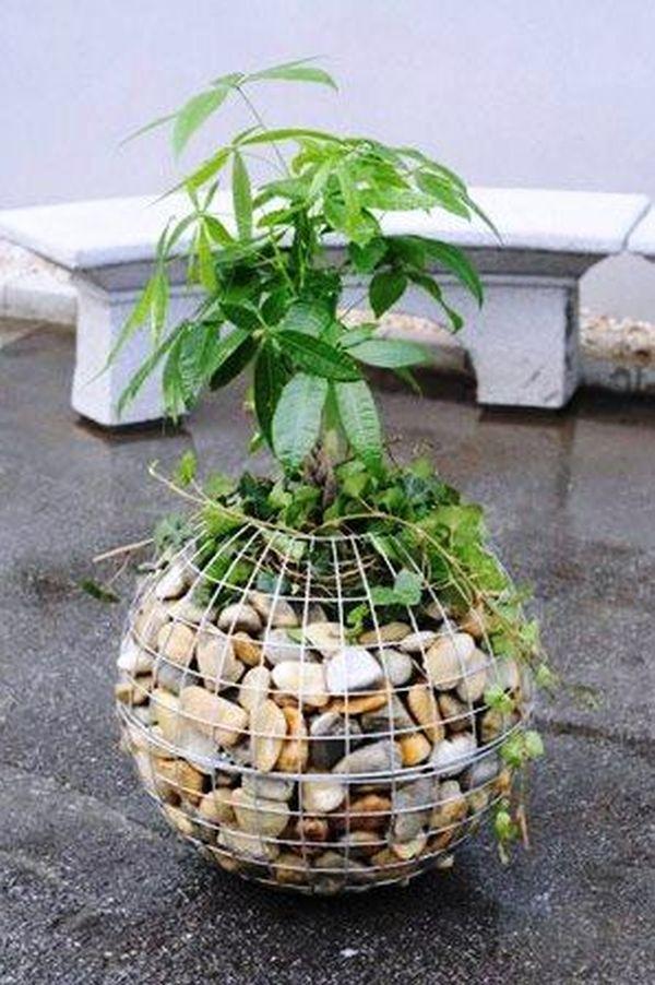 Ghiveci plante decorative din gabion