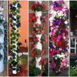 Gradini verticale din tevi si flori