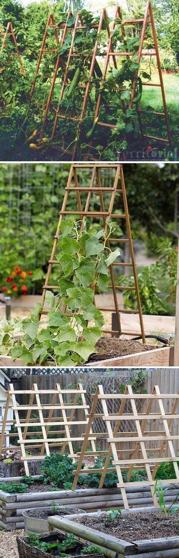 Plase suport legume cataratoare