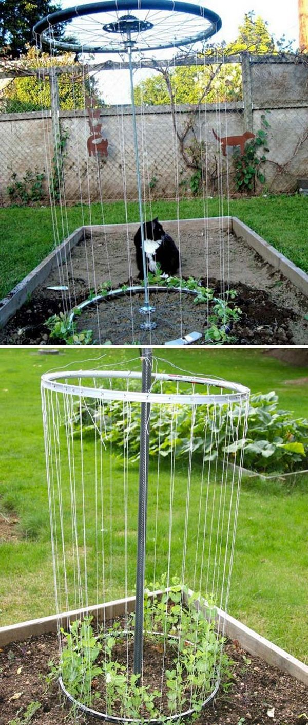 Suport circular legume agatatoare