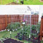 Suport mic legume agatatoare
