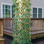 Suport vertical legume