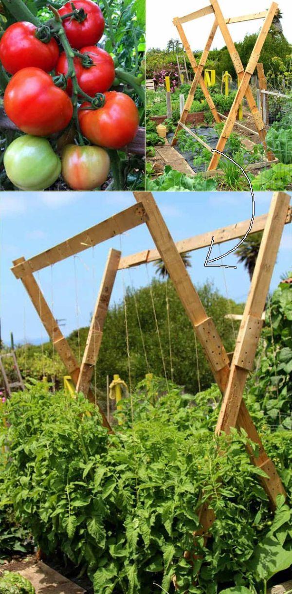 Suporturi din lemn pentru legume