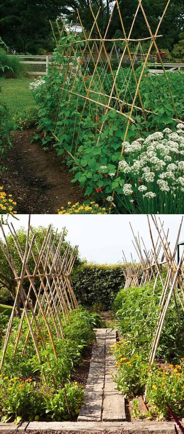 Suporturi legume din lemn