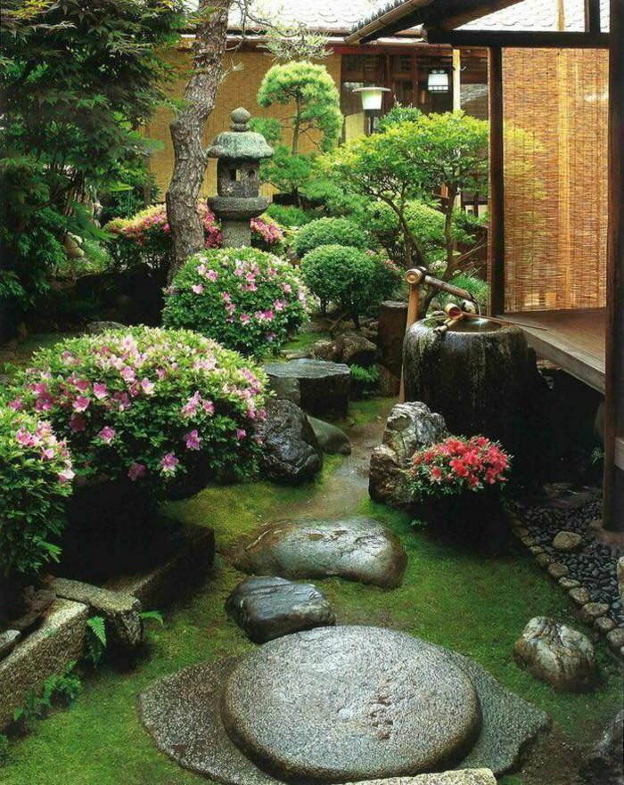 Amenajare gradina cu arbusti