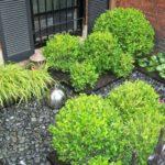 Gradina cu arbusti rotunzi