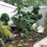 colt gradina amenajat cu arbusti