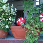 Idee decoratiuni ghivece flori