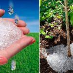 Hidrogel folosit pentru plante