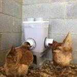 Hranitoare pentru pui facuta acasa