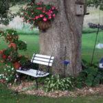 Loc de relaxare cu flori amenajat sub copac