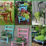 scaune vechi reutilizate ca suport de ghivece